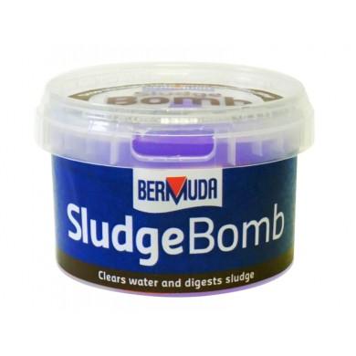 Bermuda Sludge Bomb, BER0800