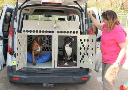 Plastové klece a přepravní boxy pro psy