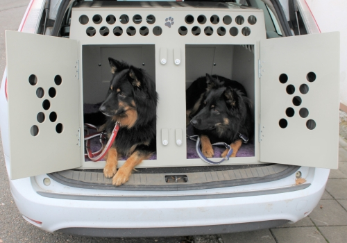 Přepravní klece pro psy do auta